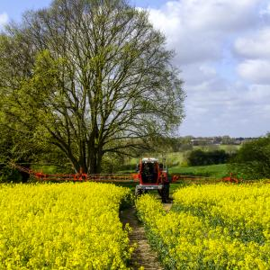 crop spraying by homey bridge lane polstead